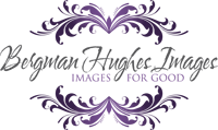 logo till Bergman Hughes Images